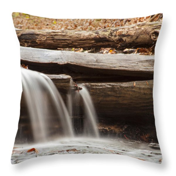 Falls Through A Tree Throw Pillow by Darleen Stry