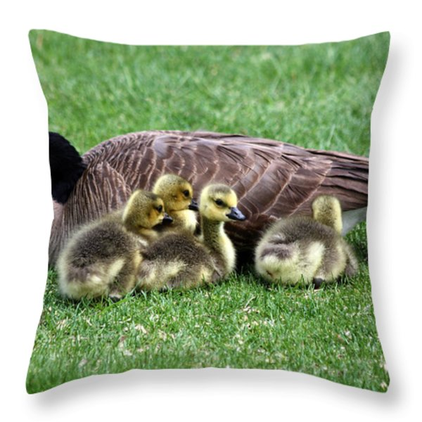 Family Gathering Throw Pillow by Dana Bechler
