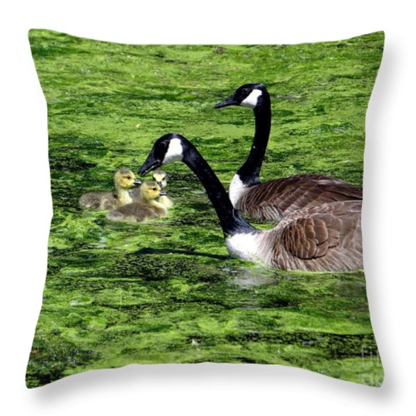 Family Outing Throw Pillow by Ed Weidman