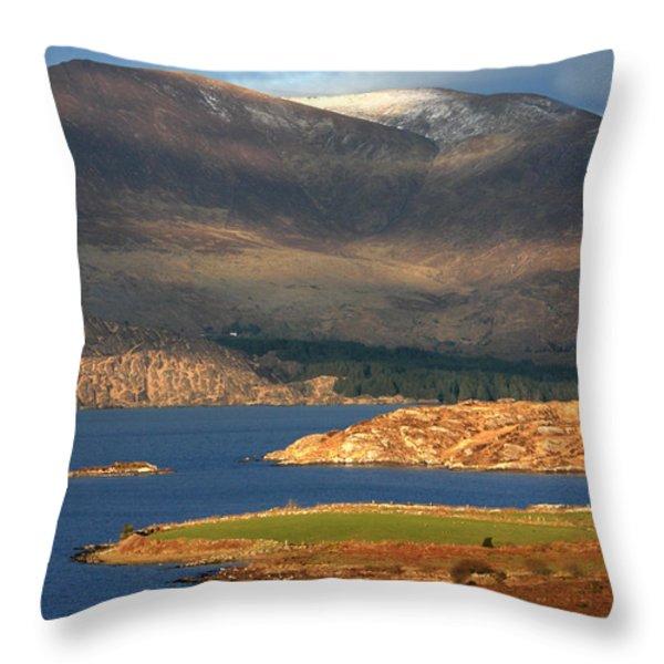 Farewell To Winter  Throw Pillow by Aidan Moran