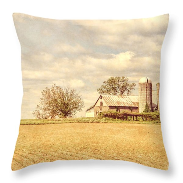 Farm and Fields  Throw Pillow by Olivier Le Queinec