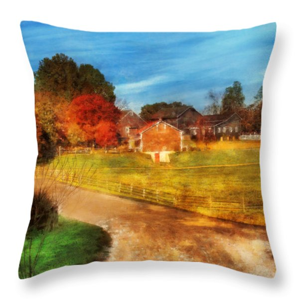 Farm - Barn -  A Walk In The Country Throw Pillow by Mike Savad