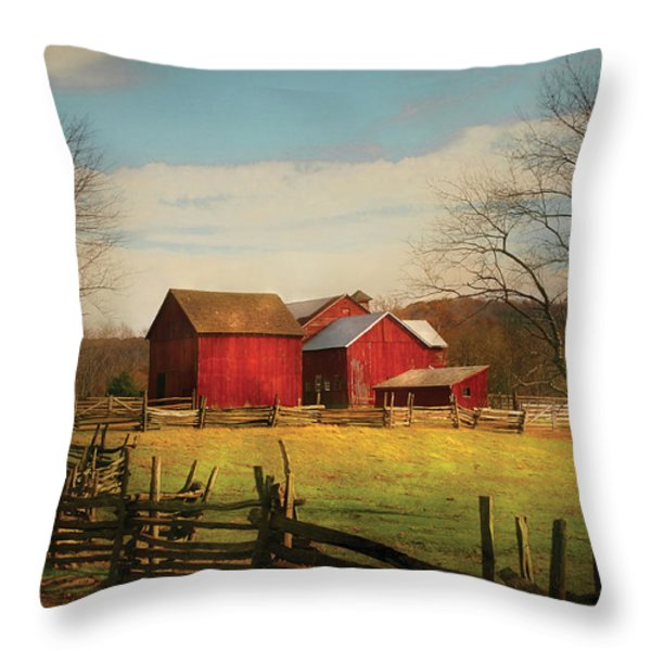 Farm - Barn - Just Up The Path Throw Pillow by Mike Savad