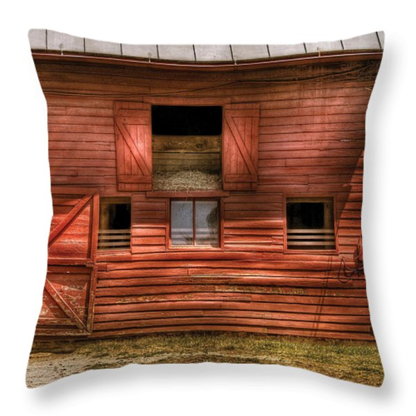 Farm - Barn - Visiting the Farm Throw Pillow by Mike Savad