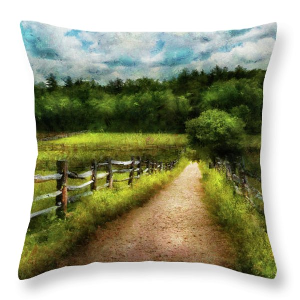 Farm - Fence - Every journey starts with a path  Throw Pillow by Mike Savad