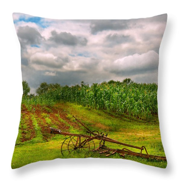 Farm - Organic Farming Throw Pillow by Mike Savad