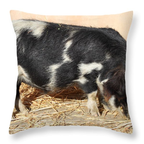 Farm Pig 7D27356 Throw Pillow by Wingsdomain Art and Photography