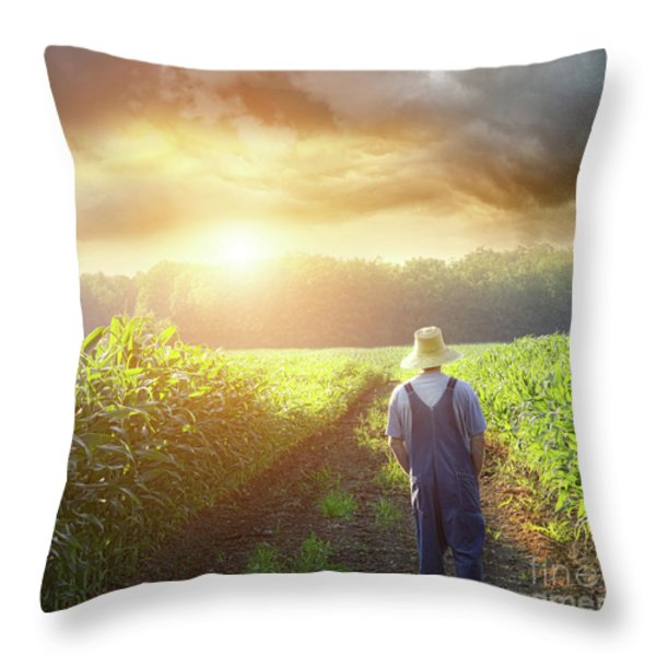 Farmer Walking In Corn Fields At Sunset Throw Pillow by Sandra Cunningham