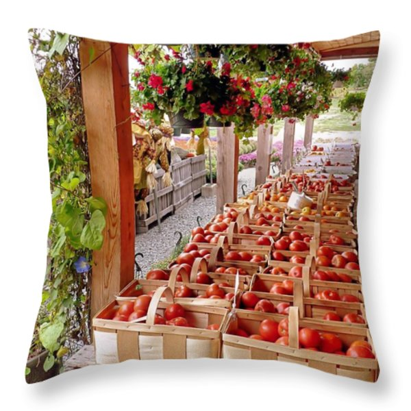 Farmstand Throw Pillow by Janice Drew