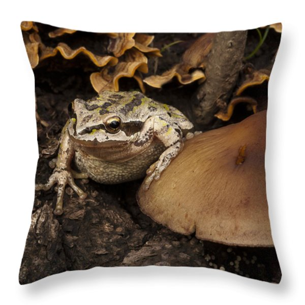 Fat Frog Throw Pillow by Jean Noren