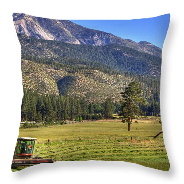 Father And Son Throw Pillow by Donna Kennedy