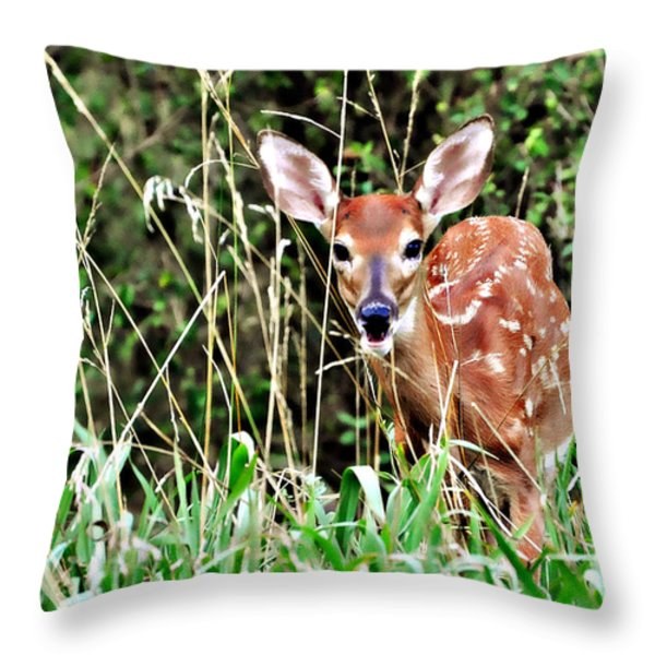 Fawn In The Grass Throw Pillow by Marty Koch