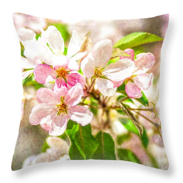 Feast Of Life 16 - Love Is In The Air Throw Pillow by Alexander Senin