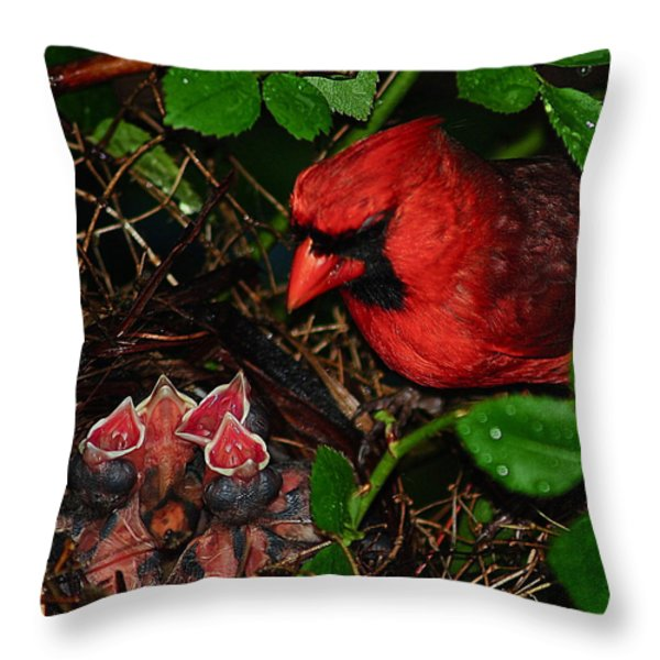 Feed Me Daddy Throw Pillow by Frozen in Time Fine Art Photography