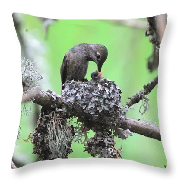 Feeding Time Throw Pillow by Angie Vogel