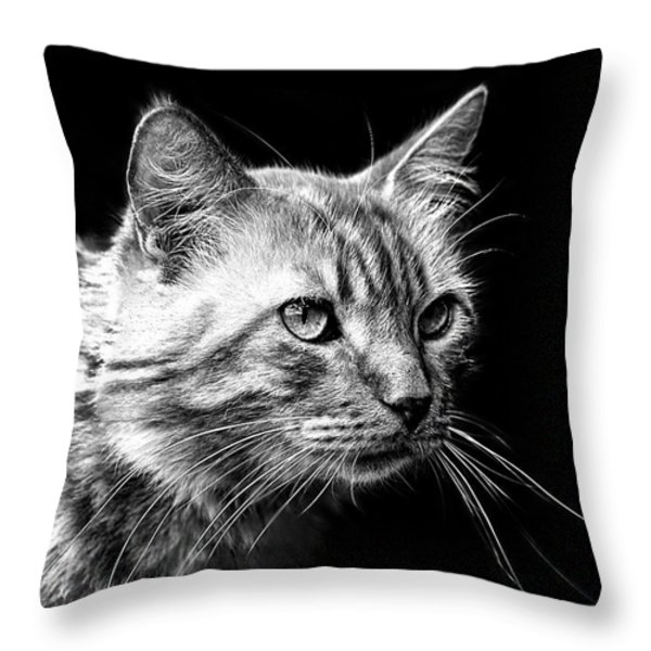 Feline Throw Pillow by Camille Lopez