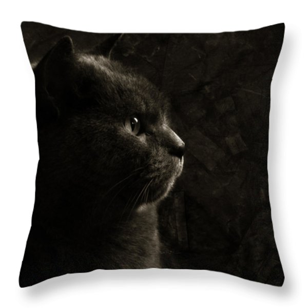 Feline Perfection Throw Pillow by Laura Melis