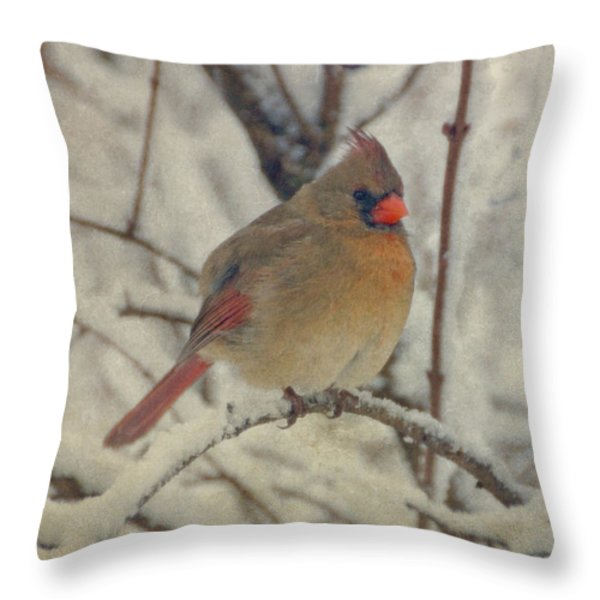 Female Cardinal In The Snow II Throw Pillow by Sandy Keeton