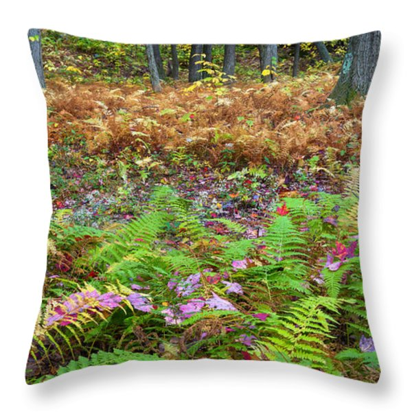 Ferns of Fall Throw Pillow by Bill  Wakeley