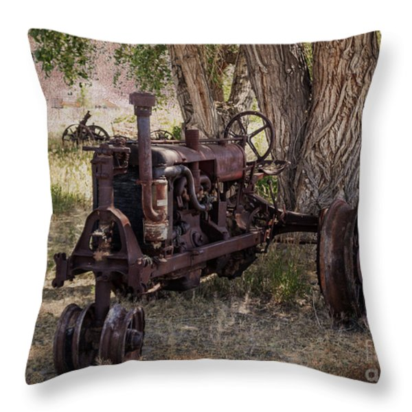 Field of Dreams Throw Pillow by Janice Rae Pariza