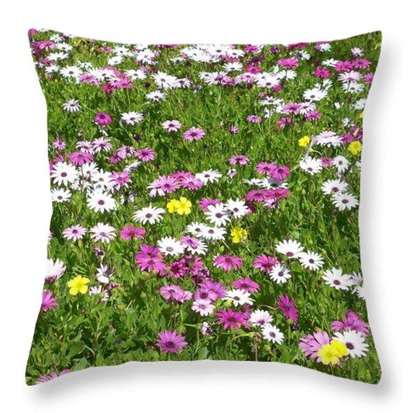 Field of Flowers Throw Pillow by Deborah  Montana