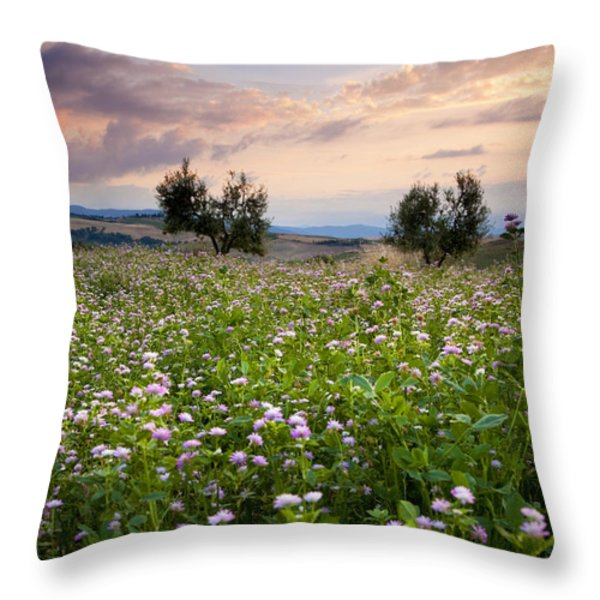Field Of Wildflowers Throw Pillow by Brian Jannsen