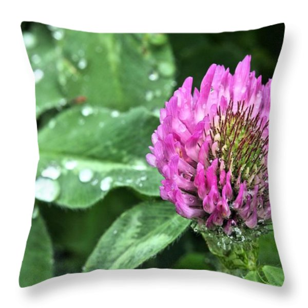 Fields of Clover Throw Pillow by JC Findley