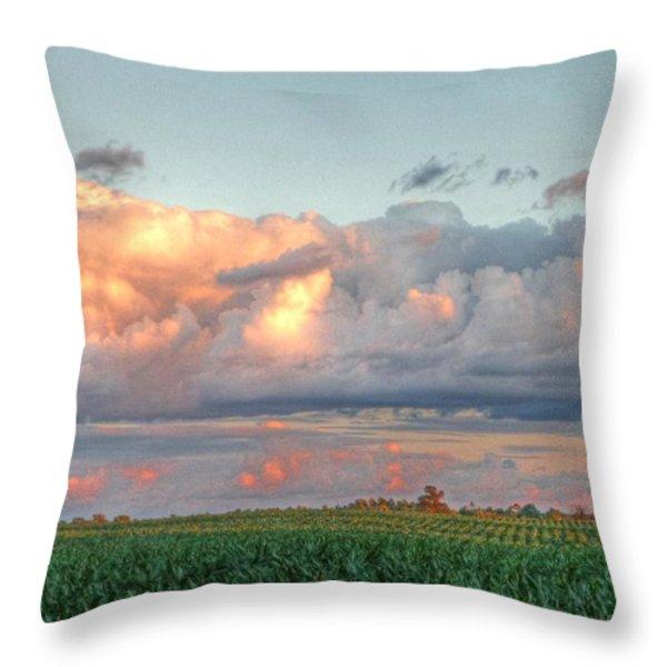 Fields Of Corn Throw Pillow by Heather Allen