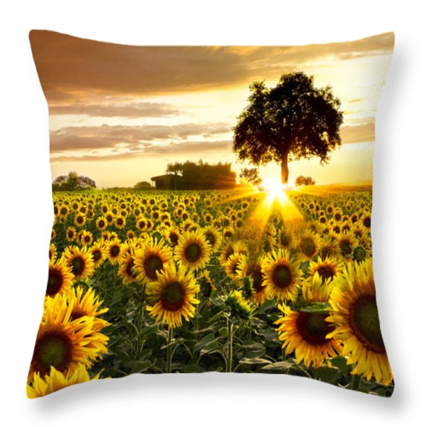 Fields of Gold Throw Pillow by Debra and Dave Vanderlaan