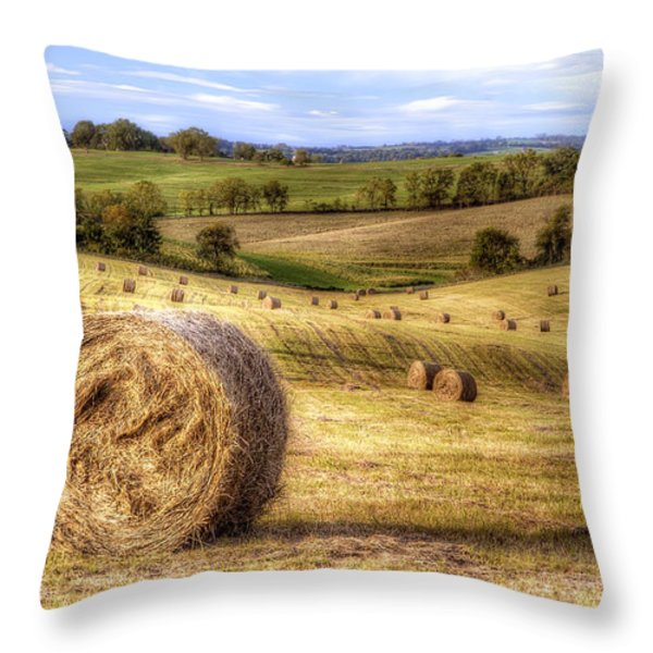 Fields of Gold Throw Pillow by Scott Norris