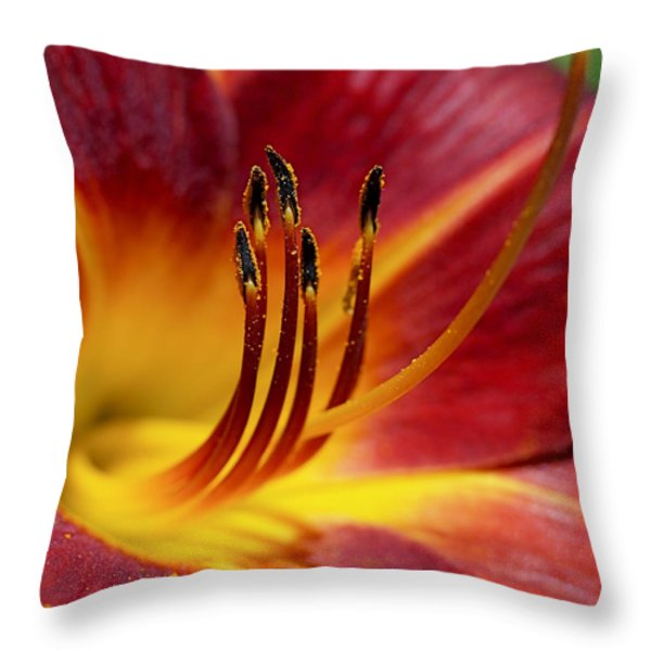 Fiery Lily Throw Pillow by Rona Black