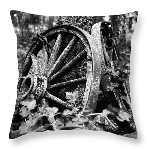 Final Rest Throw Pillow by Aaron Aldrich