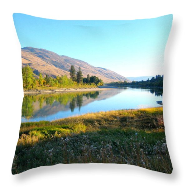 Fine Day Throw Pillow by Kathy Bassett