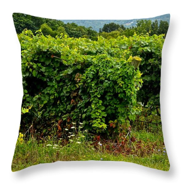 Finger Lakes Vineyard Throw Pillow by Frozen in Time Fine Art Photography