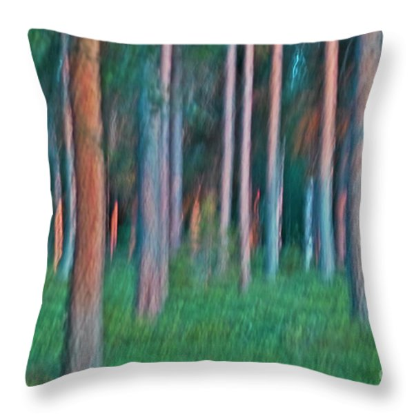 Finland Forest Throw Pillow by Heiko Koehrer-Wagner