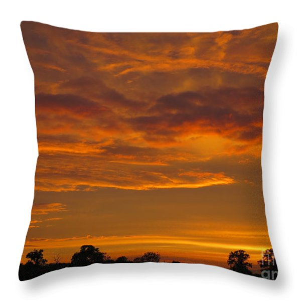 Fire in the Sky Throw Pillow by Ann Horn