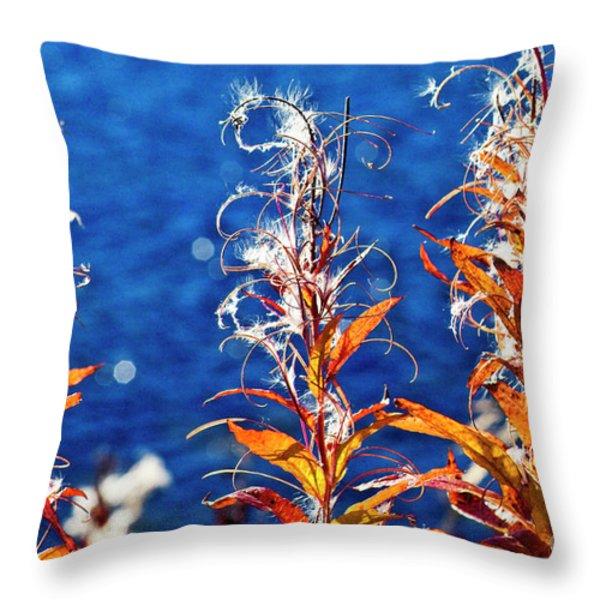 Fireweed flower Throw Pillow by Heiko Koehrer-Wagner