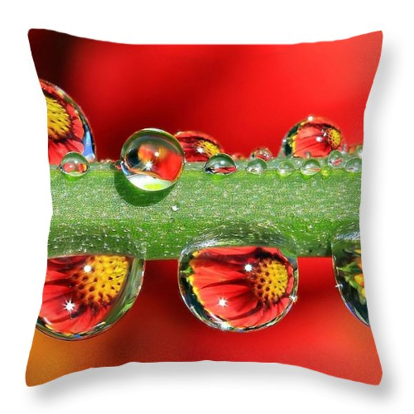 Firey Drops Throw Pillow by Gary Yost