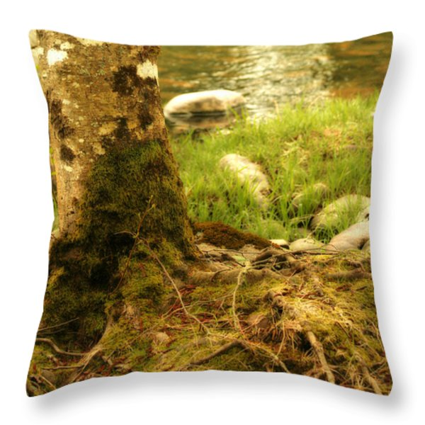 Firmly Rooted Throw Pillow by Bonnie Bruno