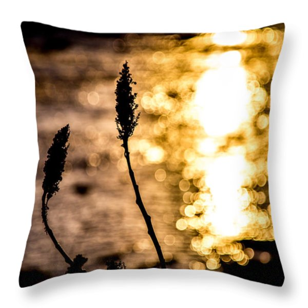 First Day Throw Pillow by Bob Orsillo