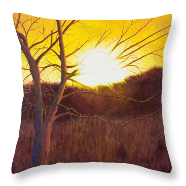 First Sunset Of Spring Throw Pillow by Garry McMichael