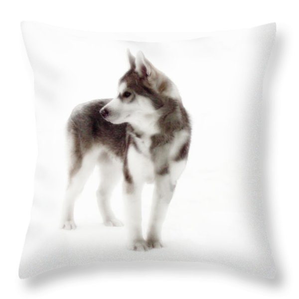 First Winter Throw Pillow by Iconic Images Art Gallery David Pucciarelli