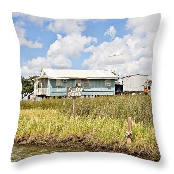 Fish Camp Throw Pillow by Scott Pellegrin