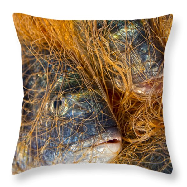 Fish On The Net Throw Pillow by Stylianos Kleanthous