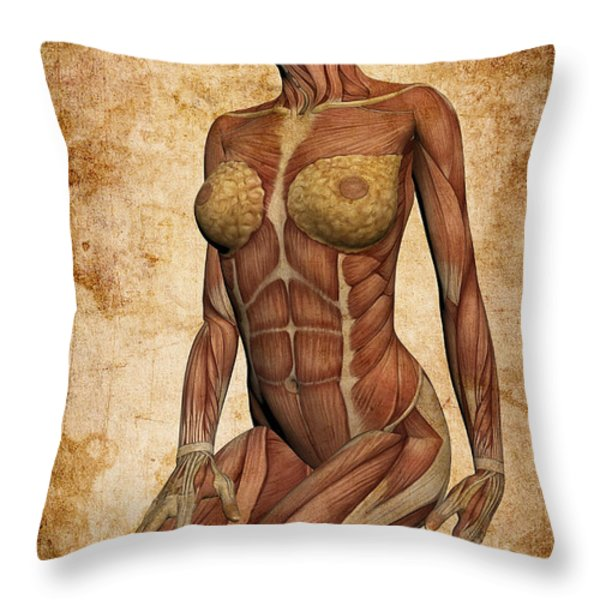 Fit Female Revealed Throw Pillow by Daniel Hagerman