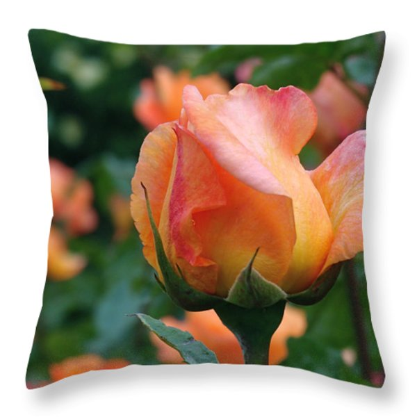 Fit For A Queen Throw Pillow by Rona Black