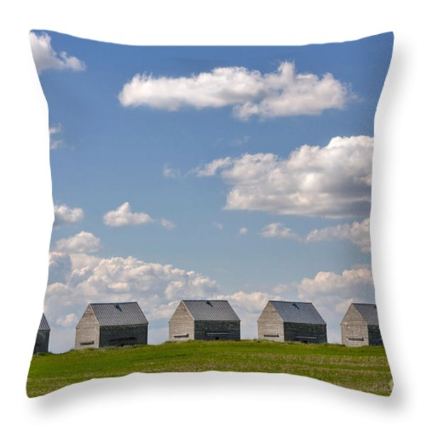 Five Sheds On The Alberta Prairie Throw Pillow by Louise Heusinkveld