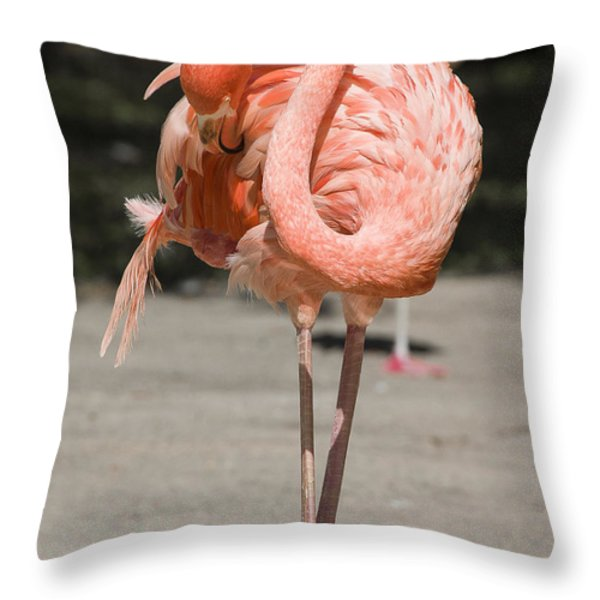 Flamingo Throw Pillow by Steven Ralser