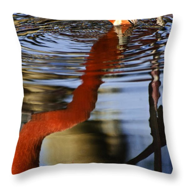 Flamino Reflections 1 Throw Pillow by Dave Dilli