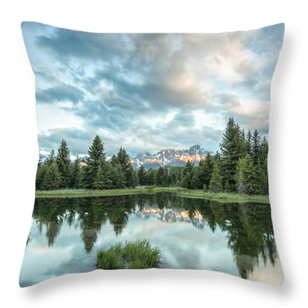Flash of Light Throw Pillow by Jon Glaser
